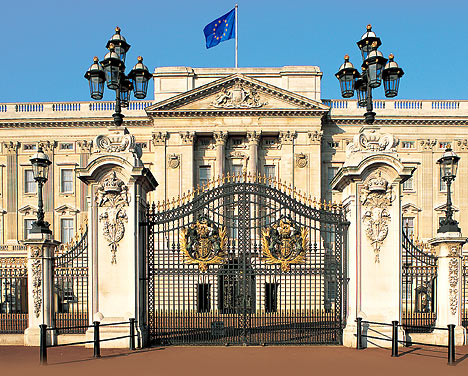 Buckingham palace tourist image